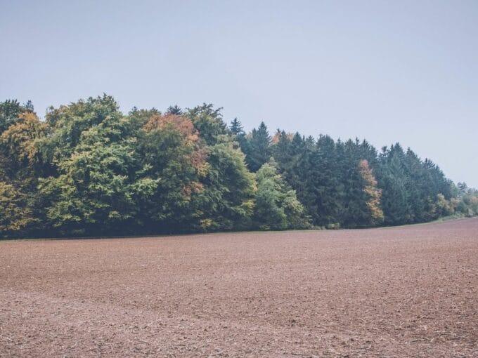 land in larnaca